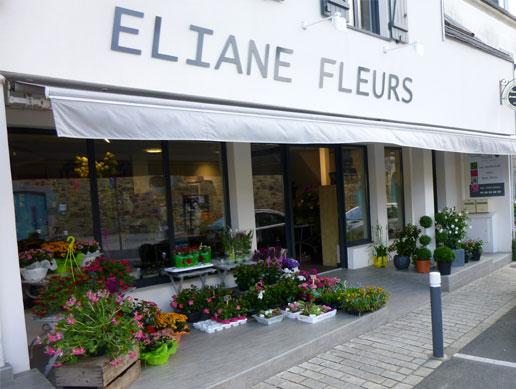 eliane-fleur-devanture-magasin